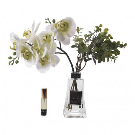 Orchide dekorues me arome