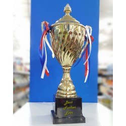 Trofe i Personalizueshem DH026